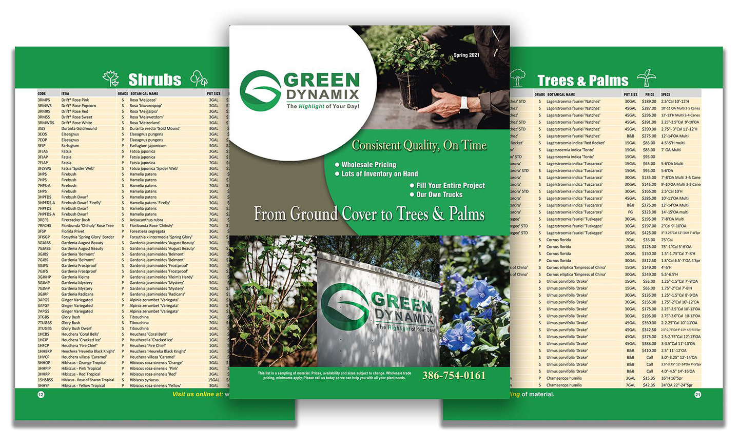 3-Page-Header-Green-Dynamix-Update-Large